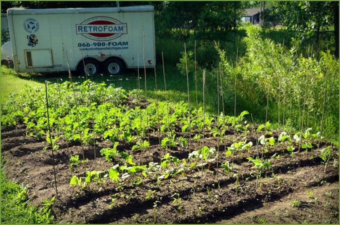 RetroFoam of Michigan Staff Come Together to Start Company Garden